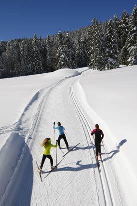 Ski skating ou classique