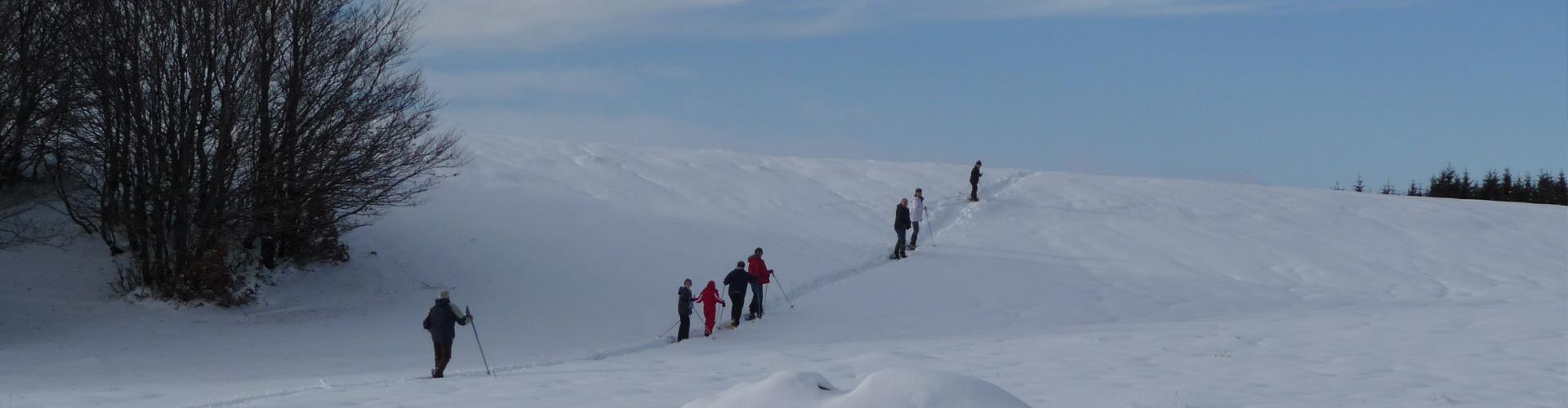 """<div class=""""sliderdesc""""> <h4>Fondez vous dans le décor ...</h4> Avec plus de 35 km de pistes et circuits, la station Aubrac Sud vous propose des itinéraires de tous niveaux accessibles à tous.  <br><br> En raquette ou ski de fond, le site est idéal pour l'initiation et offre également de magnifiques parcours pour les plus aggueris.<br><br> <a href=""""https://www.aubrac-sud-lozere.com/la-station-de-ski/plan-des-pistes/"""">Découvrez et téléchargez le plan des pistes.</a> </div>"""